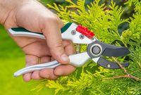 Ножницы садовые Verto 15G207