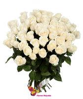 cumpără Trandafir alb Ecuador 70-80CM Pret la o bucata în Chișinău