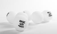 купить Мяч для настольного тенниса Tibhar Basic 40+ SL бесшовный (886) в Кишинёве