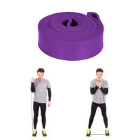 купить Эспандер 208*22*4,5 мм (14-23 kg) violet (1432) в Кишинёве