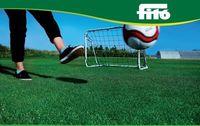 Спорт - Семена травы для газонов (смесь) - Семилас Фито