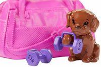 Păpușa Barbie (GKH73)