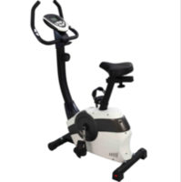 Magnetic Bike KPR61800
