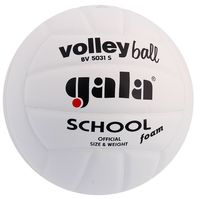 Gala School (BV 5031S)