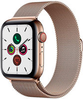 Apple Watch 5 40mm/Gold Stainless Steal MWX72 GPS + LTE