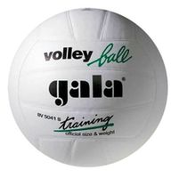 купить Мяч волейбольный Gala Training white 5041 в Кишинёве