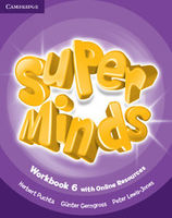Super Minds Workbook Level 6