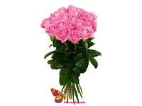 cumpără Trandafir ROZ OLANDA 80-90CM Pret/buc în Chișinău