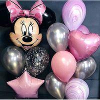 купить Little Minnie Party в Кишинёве