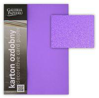 ARGO Картон GPAPIERU Millenium A4, 220 г/м2, фиолетовый