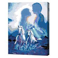 Pictura pe numere 40x50cm Doi cai albi