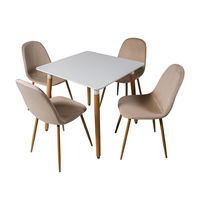 Белый столовый набор DT E10 + 4 стула капучино DC 6001