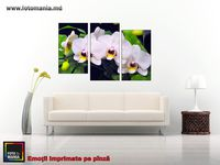 Картина напечатанная на холсте - Триптих Цветы 0008