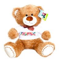 купить Плюшевая игрушка Мишка - Noroc в Кишинёве