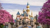 Поездка в Disneyland Paris