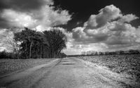 Картина напечатанная на холсте - Black & White 0007 / Печать на холсте