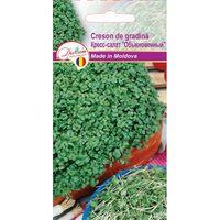 cumpără Seminte de Crescon de gradina 1gr în Chișinău