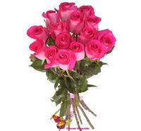 cumpără Buchet fuxia de 15 trandafiri  80-90CM în Chișinău