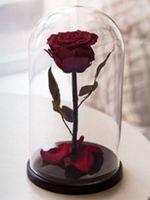 купить Вечная Бордовый  Роза в колбе в Кишинёве
