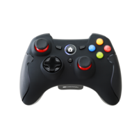 Wireless Gamepad Canyon CND-GPW6