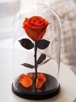 купить Вечная Оранжевая Роза в колбе в Кишинёве