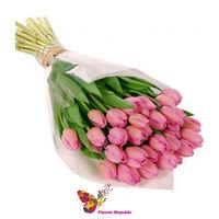 купить Малиновые тюльпанов в Кишинёве