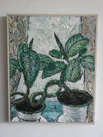 Натюрморт с цветами Диффенбахия, 48x48 см, холст, масло
