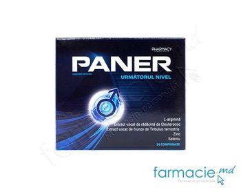 купить Paner comp N30 в Кишинёве
