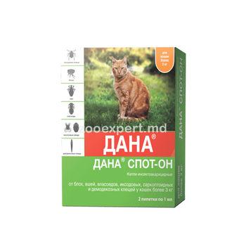 купить Дана Спот-Он для кошек более 3 кг в Кишинёве