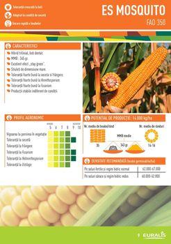 купить Москито - Семена кукурузы - Евралис Семанс в Кишинёве