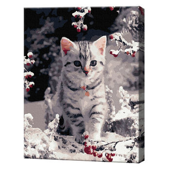 Котик, 40х50 см, картина по номерам Артукул: GX36547