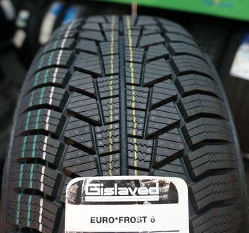 купить 205/60 R16 GISLAVED   Euro Frost 6 в Кишинёве