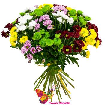 cumpără Buchet «Chrysanthemum Santini mix multicolor» în Chișinău