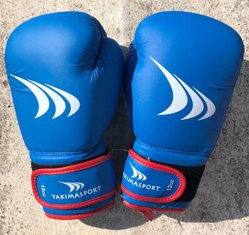 Перчатки боксерские 12 oz Yakimasport Shark 100343 (4849)