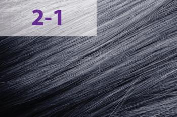 Краска для волос,ACME jNowa Siena CS, 90 мл., 2/1 - пепельный черный