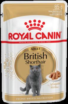 купить Royal Canin BRITISH SHORTHAIR ADULT (В СОУСЕ) 85 gr в Кишинёве