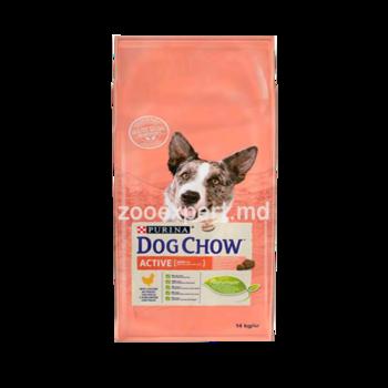 cumpără DOG CHOW Active 14kg для взрослых активных собак, с курицей în Chișinău
