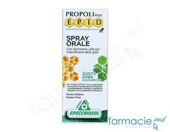 cumpără Epid spray bucofaring 15ml (extr.propolis si turita mare) în Chișinău