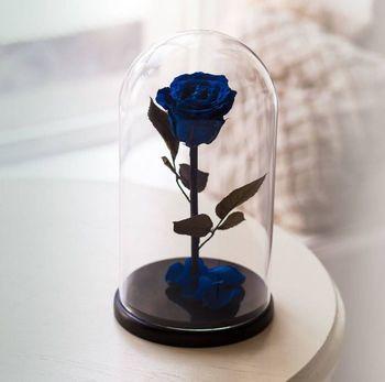 купить Вечная Синяя Роза в колбе в Кишинёве
