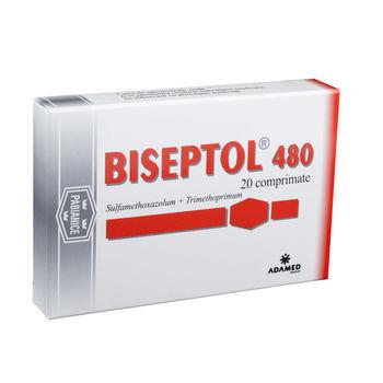 cumpără Biseptol 480mg comp. N20 în Chișinău