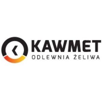 купить Каминная топка - KAW-MET W17 Portos 14 кВт в Кишинёве