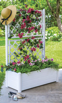 cumpără Ghiveci Italia pentru flori, dreptunghiular  cu spalier 1000x430x1420 mm, alb în Chișinău