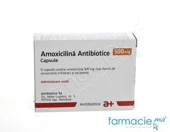 купить Amoxicilina 500mg caps. N10 (Antibiotice) в Кишинёве