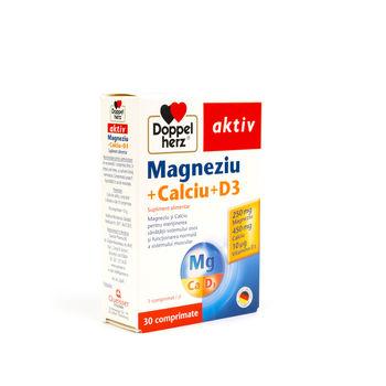 cumpără Doppelherz Aktiv Magneziu+Calciu+D3 N30 în Chișinău