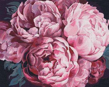 Картина для рисования по номерам Вдохновляющий аромат 40x50 см  3015