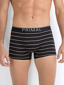 купить Трусы мужские PRIMAL B229 в Кишинёве