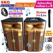 SKG PA Speaker (300W)