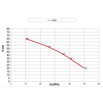 купить Мотопомпа DWP 420 BS3 в Кишинёве