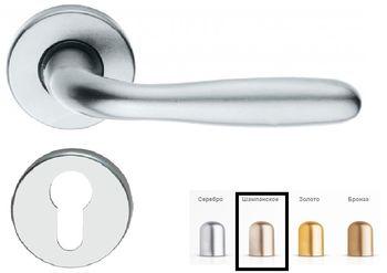 Дверная ручка на розетке Roma-F2 шампанское + накладка под цилиндр