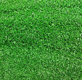 Ландшафтная трава, DUNDEE GRASS